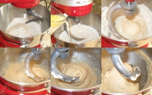 Evolution of dough